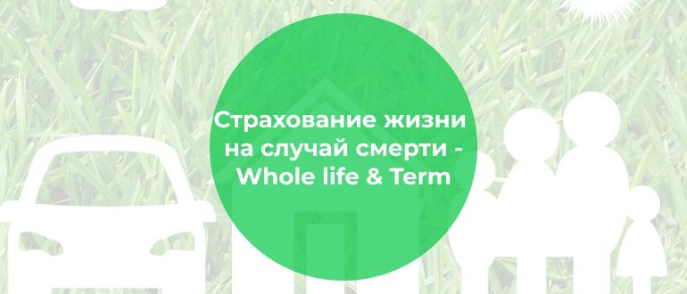 Страхование жизни на случай смерти. Срочное и пожизненное